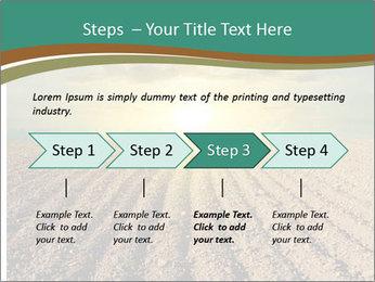 Sunrise In Wineyard PowerPoint Template - Slide 4