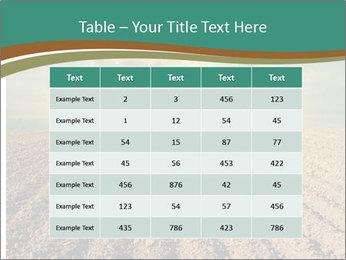Sunrise In Wineyard PowerPoint Template - Slide 55
