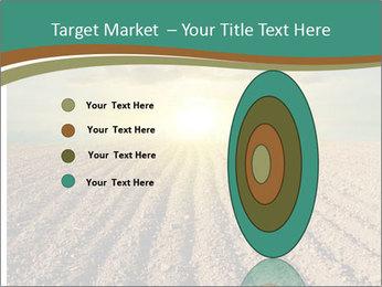 Sunrise In Wineyard PowerPoint Template - Slide 84