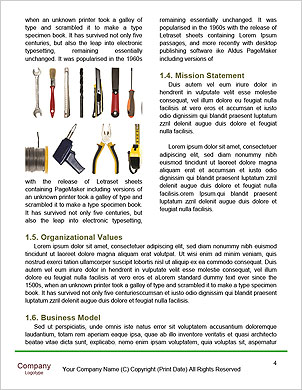 0000089710 Word Template - Page 4