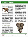 0000089738 Word Template - Page 3