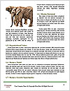 0000089738 Word Template - Page 4