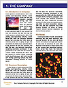 0000089740 Word Template - Page 3