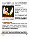 0000089740 Word Template - Page 4