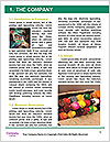 0000089742 Word Template - Page 3