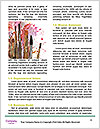 0000089742 Word Template - Page 4