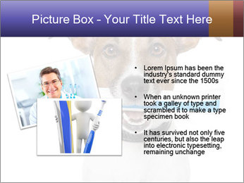 Dog With Tooth Brush PowerPoint Template - Slide 20