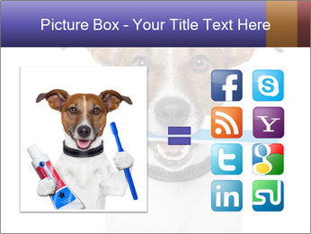 Dog With Tooth Brush PowerPoint Template - Slide 21