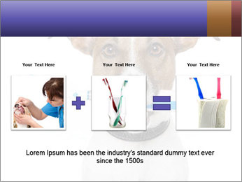 Dog With Tooth Brush PowerPoint Template - Slide 22