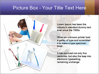 Dog With Tooth Brush PowerPoint Template - Slide 23