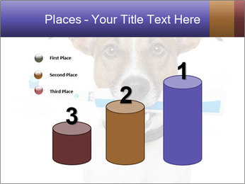 Dog With Tooth Brush PowerPoint Template - Slide 65