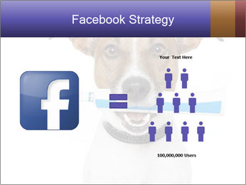 Dog With Tooth Brush PowerPoint Template - Slide 7