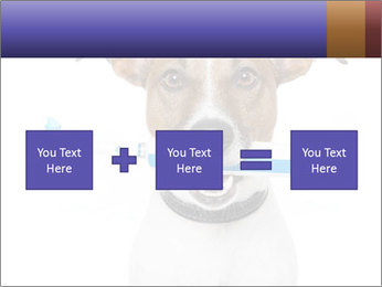 Dog With Tooth Brush PowerPoint Template - Slide 95