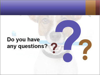 Dog With Tooth Brush PowerPoint Template - Slide 96