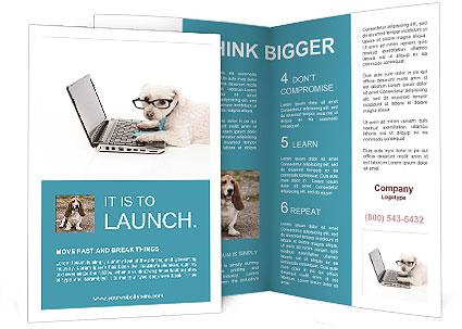 0000089744 Brochure Template