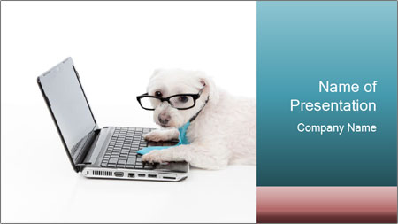 Dog And Laptop PowerPoint Template
