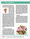 0000089745 Word Template - Page 3