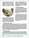 0000089745 Word Template - Page 4