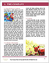 0000089780 Word Template - Page 3
