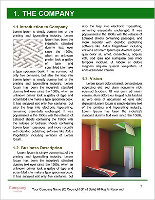 0000089785 Word Template - Page 3