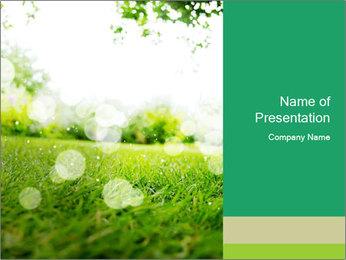 Spring Mood PowerPoint Template - Slide 1