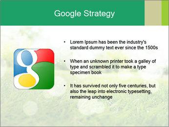 Spring Mood PowerPoint Template - Slide 10