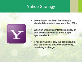 Spring Mood PowerPoint Template - Slide 11