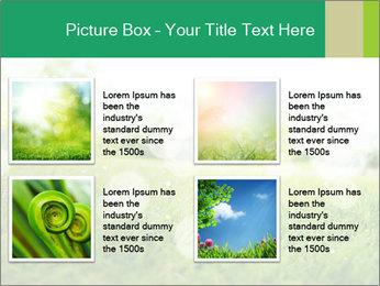 Spring Mood PowerPoint Template - Slide 14