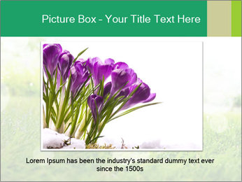 Spring Mood PowerPoint Template - Slide 15