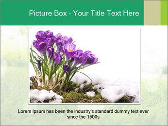 Spring Mood PowerPoint Template - Slide 16