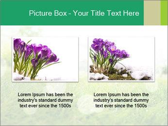 Spring Mood PowerPoint Template - Slide 18