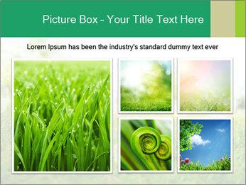 Spring Mood PowerPoint Template - Slide 19