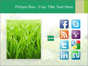 Spring Mood PowerPoint Template - Slide 21