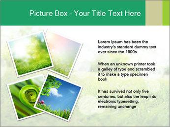 Spring Mood PowerPoint Template - Slide 23