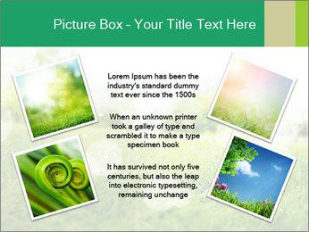 Spring Mood PowerPoint Template - Slide 24