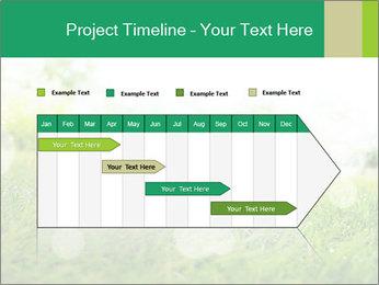 Spring Mood PowerPoint Template - Slide 25