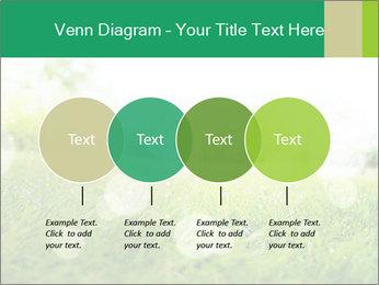 Spring Mood PowerPoint Template - Slide 32