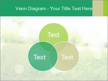 Spring Mood PowerPoint Template - Slide 33