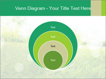 Spring Mood PowerPoint Template - Slide 34