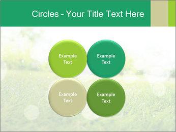 Spring Mood PowerPoint Template - Slide 38