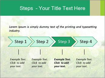 Spring Mood PowerPoint Template - Slide 4