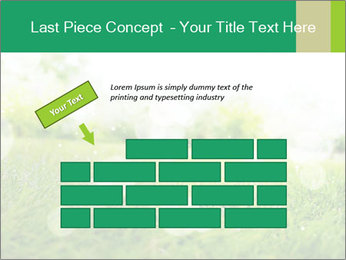 Spring Mood PowerPoint Template - Slide 46