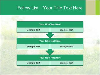 Spring Mood PowerPoint Template - Slide 60
