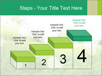 Spring Mood PowerPoint Template - Slide 64