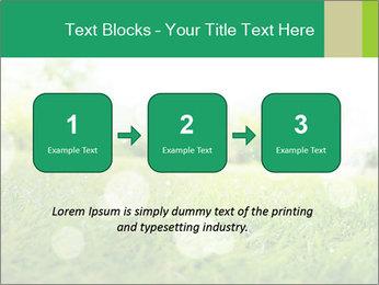 Spring Mood PowerPoint Template - Slide 71