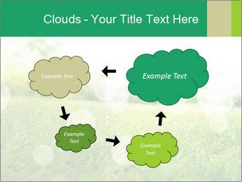 Spring Mood PowerPoint Template - Slide 72