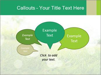 Spring Mood PowerPoint Template - Slide 73