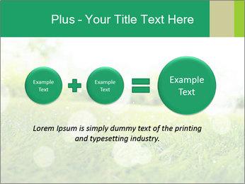 Spring Mood PowerPoint Template - Slide 75