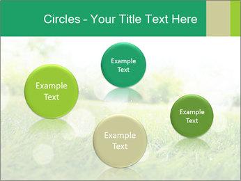Spring Mood PowerPoint Template - Slide 77
