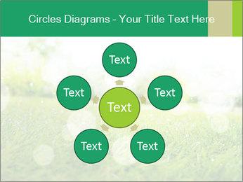 Spring Mood PowerPoint Template - Slide 78